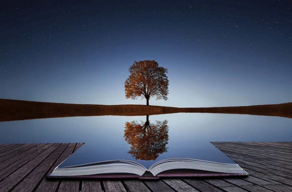 A tree reflecting in the water.